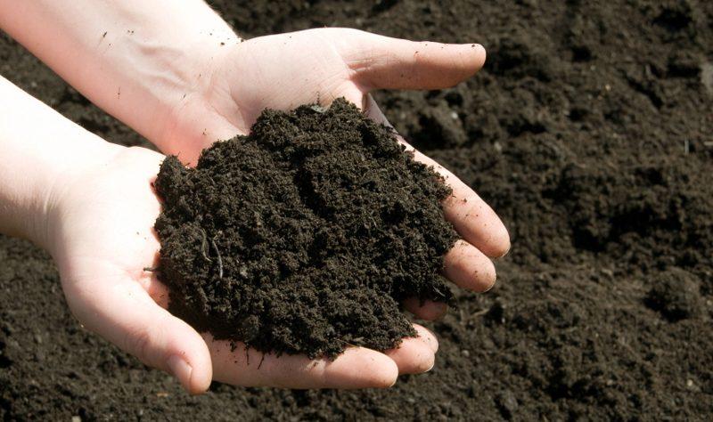 Các chỉ tiêu dùng để đánh giá, phân tích môi trường đất
