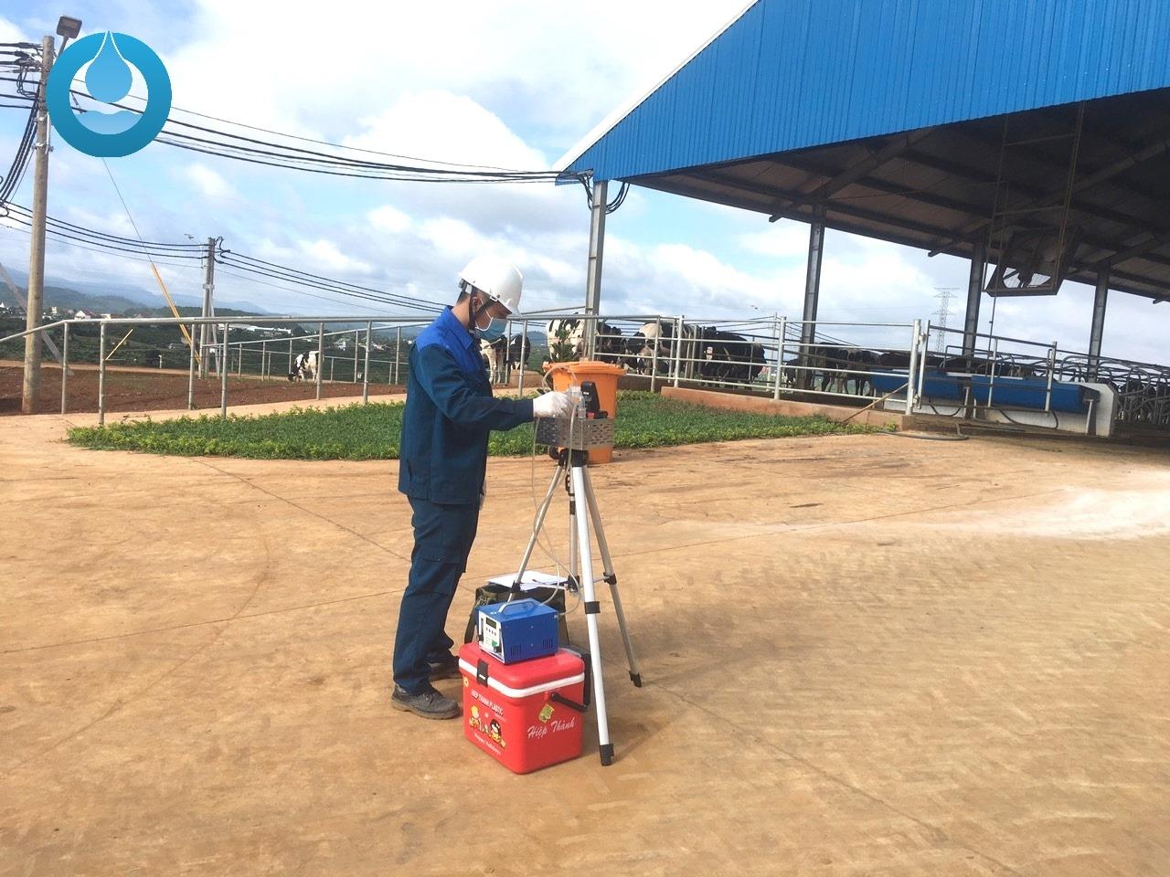 lấy mẫu Ozon tại trang trại nuôi bò