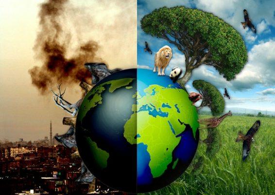 Những điều về cam kết bảo vệ môi trường mà bạn chưa biết