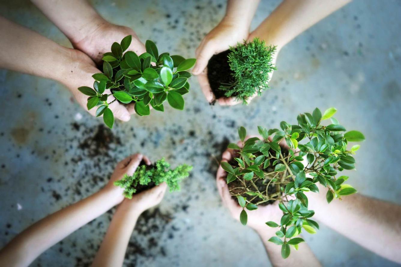 Quy trình thực hiện lập báo cáo quan trắc môi trường định kỳ tại Thành phố Hồ Chí Minh theo thông tư 43