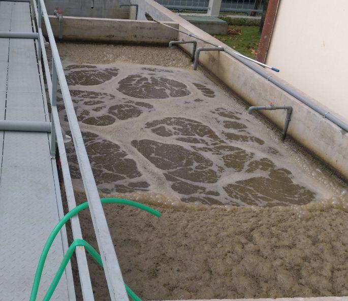 Phân tích đặc tính thành phần nước thải chăn nuôi